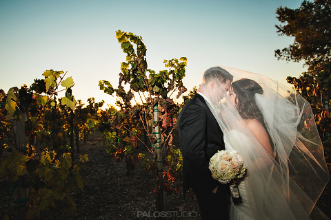 ponte-winery-wedding-1