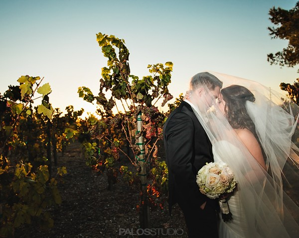 Ponte Winery Temecula Wedding | Melissa & Ben